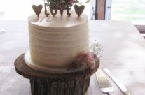 Rustic buttercream cutting cake